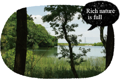 Rich nature is full