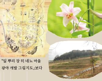 일 뿌리 장 히 네노 마을 광야 개발 그림지도」보다