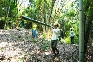 竹をみんなで運ぶ