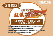 Koyoguide20171126_ch
